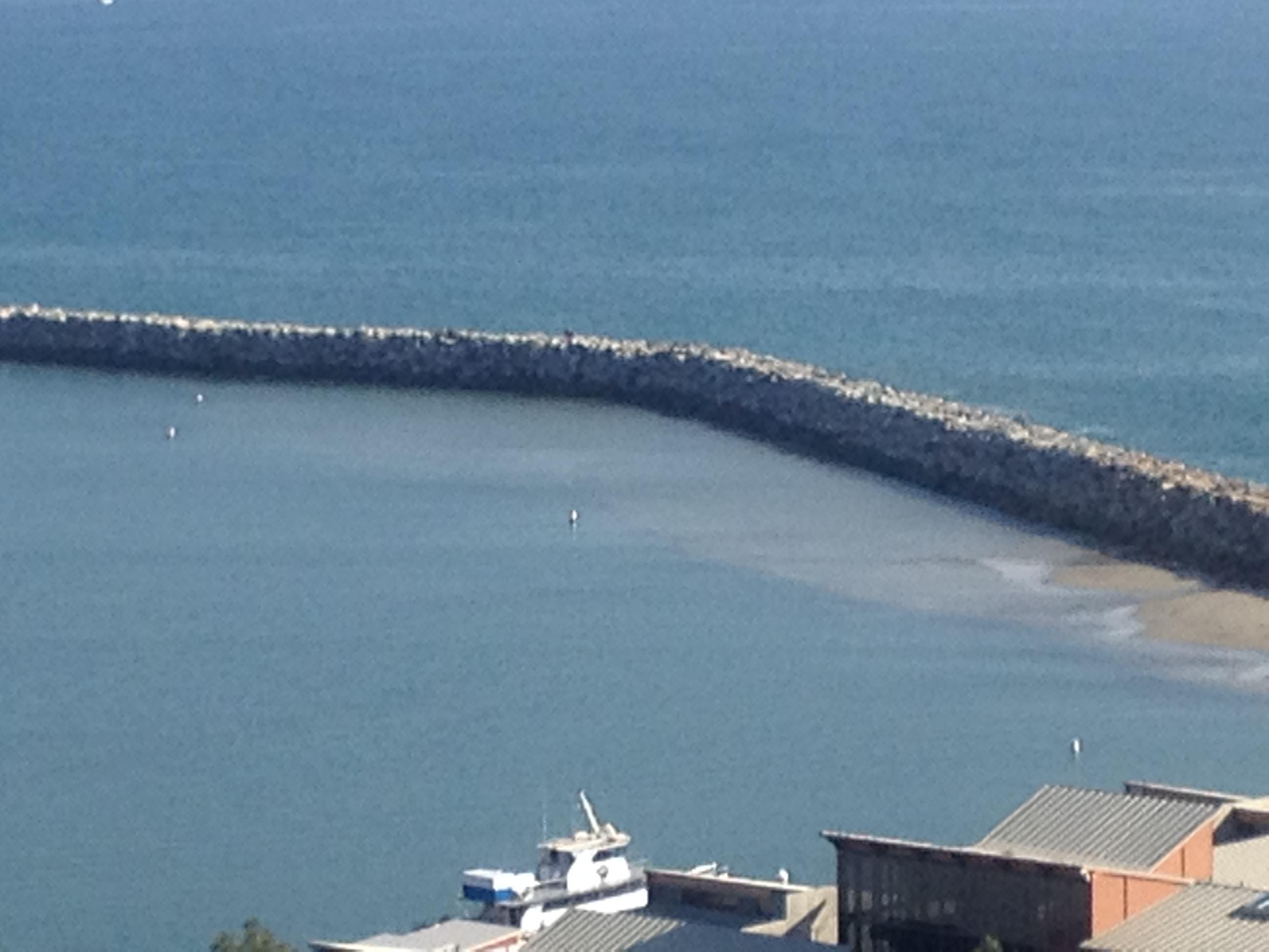 Shoaling Emphasizes Need for Dana Point Harbor Dredging