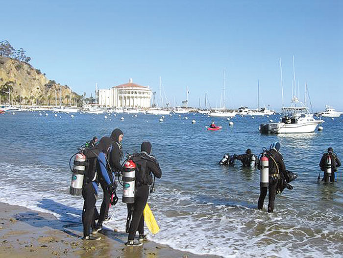Avalon Underwater Cleanup Set for Feb. 23