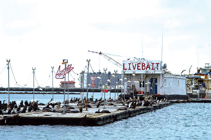 San Diego Bait Barge Must Move by 2014