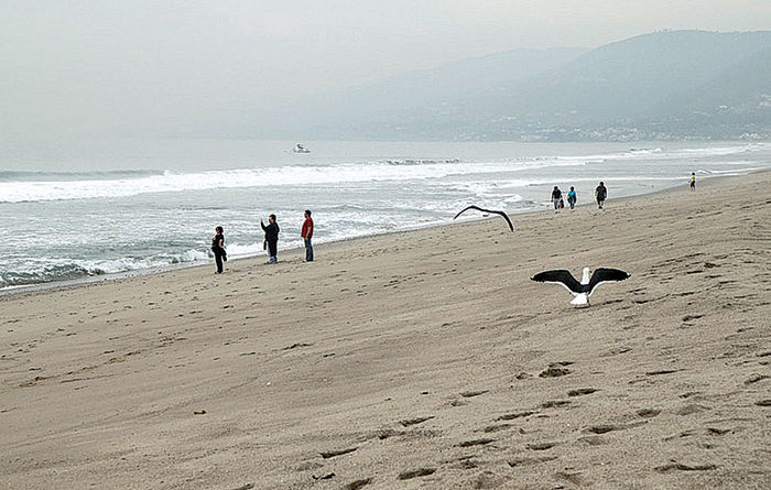 Pollution Report: Most SoCal Beaches Improving