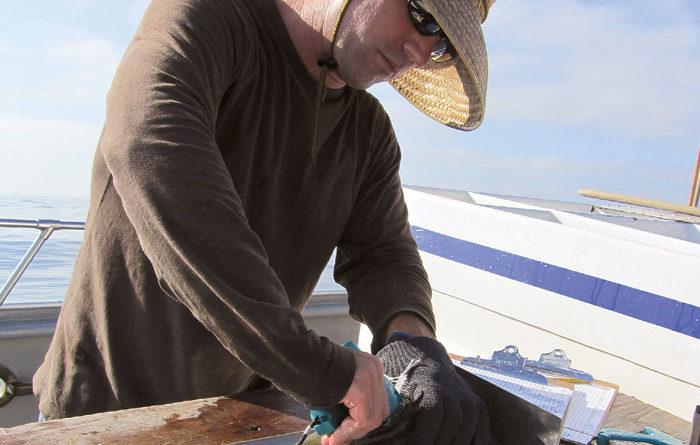 Meet Lyall Bellquist -- Tracking SoCal's Saltwater Bass