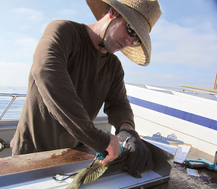 Meet Lyall Bellquist -- Tracking SoCal's Saltwater Bass