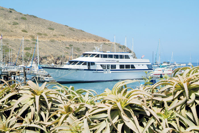 Catalina Express Extends Free Birthday Rides