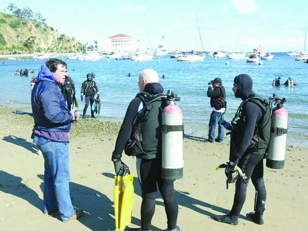 Avalon Harbor Underwater Cleanup Set Feb. 25