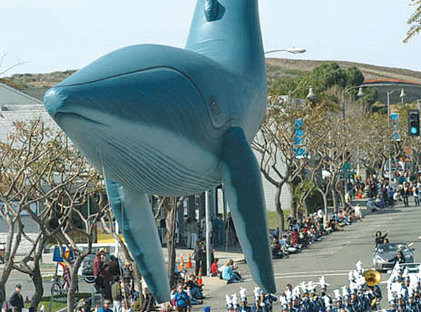 Dana Point Festival of Whales Returns March 10-11