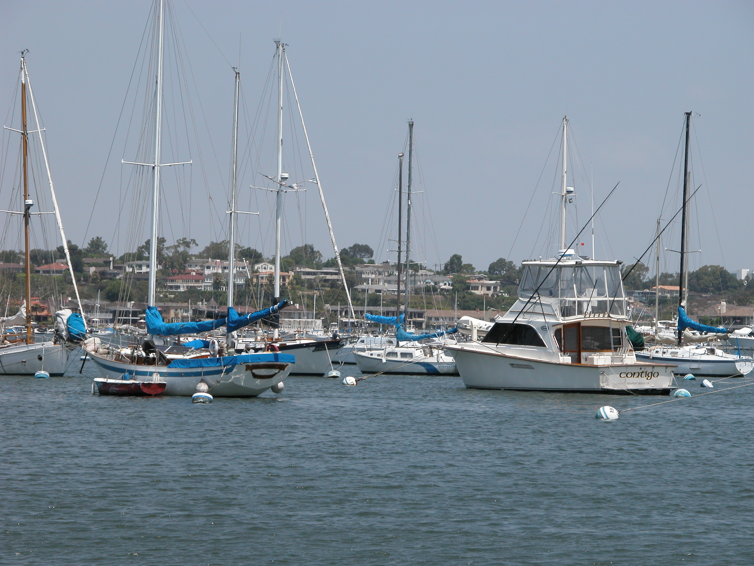 Floating Docks May Replace Newport's Moorings