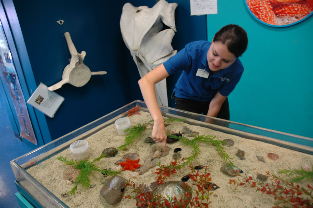 ExplorOcean sets sights on future with proposed remodel