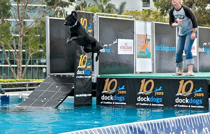 See the Ram Dock Dogs at Del Mar