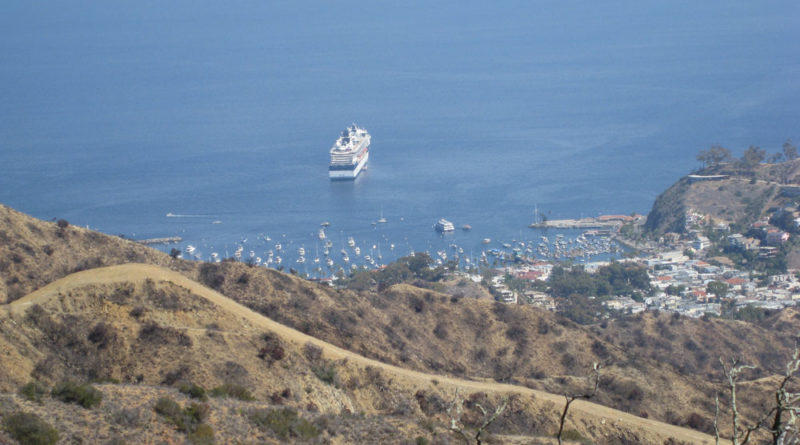 Catalina Eco-Marathon set for Nov. 8