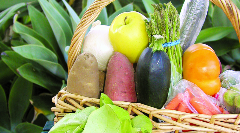 Los Cabos Organic Farmers' Market Opens for Cruising Season