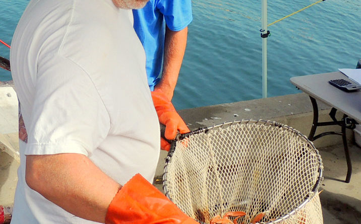 New San Diego open-air fish market a sweet-smelling venue for all