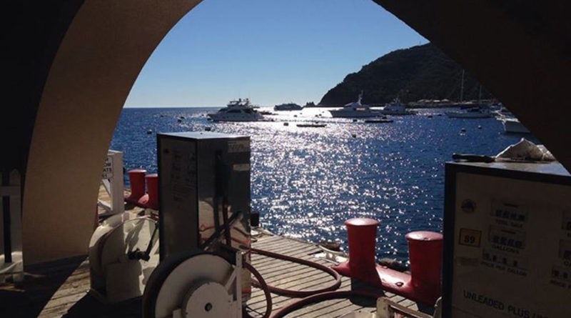 Avalon authorizes emergency fuel dock study