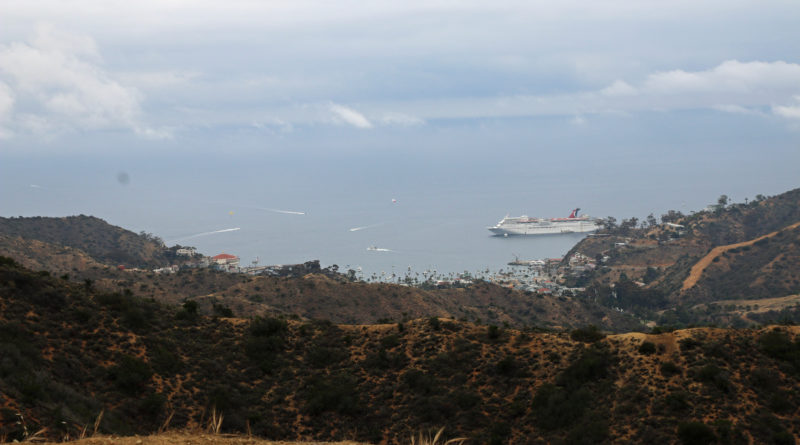 Catalina Island Conservancy offers naturalist-led hike