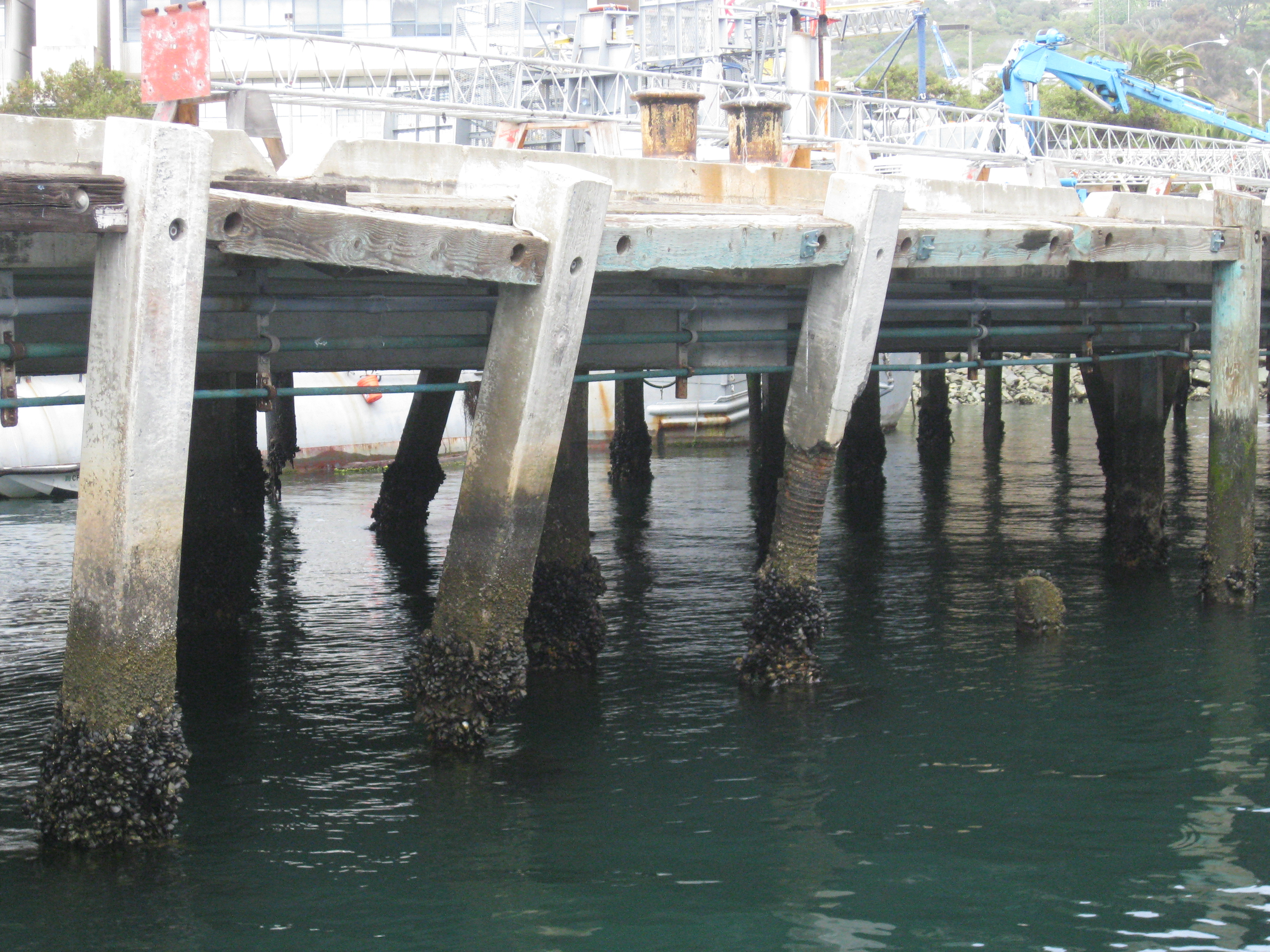 Decrepit Point Loma Wharf to be Rebuilt in June