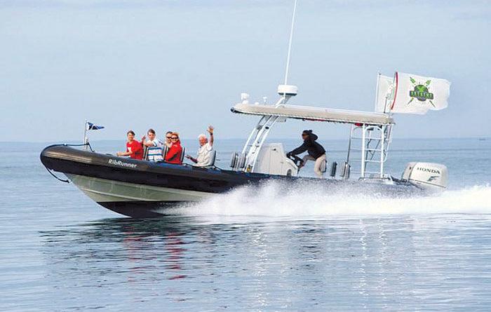 New Catalina Adventure Combines Shore and Ocean Exploration