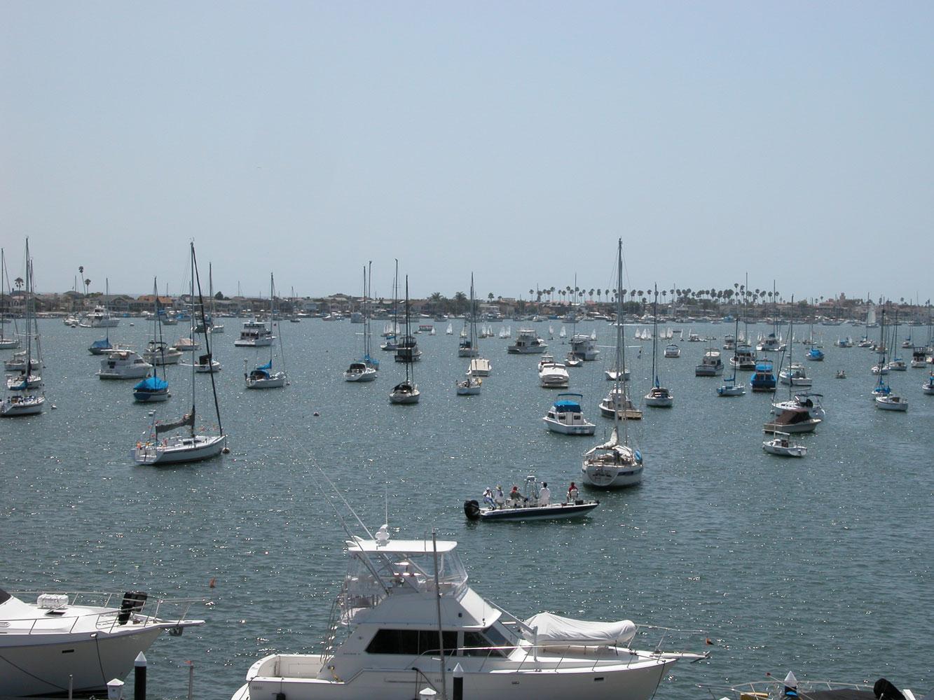 Moorings or floating docks?