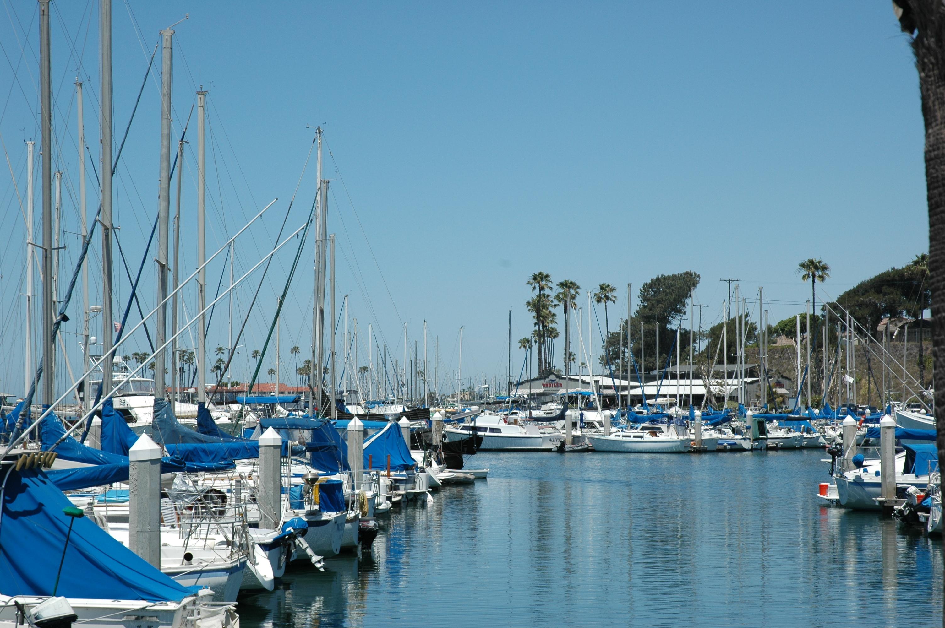 Oceanside Harbor weighs dye tablet viability