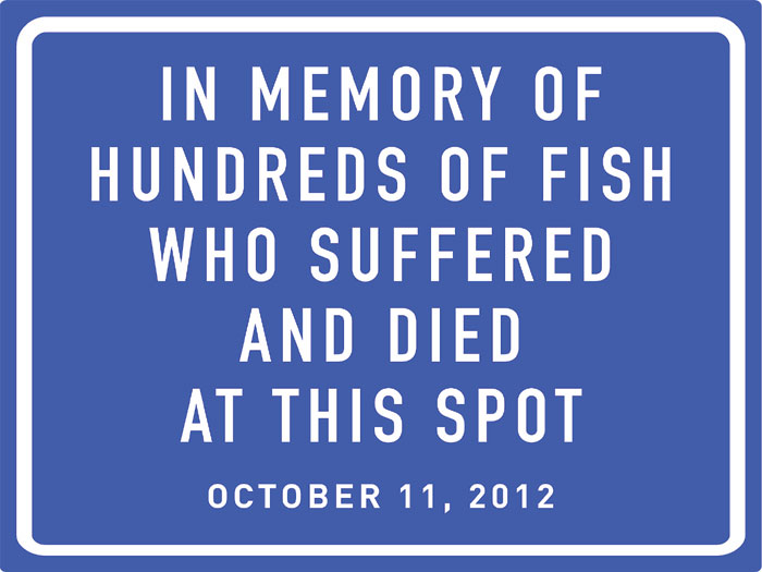 Fish Die on Way to Market; PETA Wants Memorial