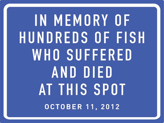 Fish Die on Way to Market; PETA Wants Memorial