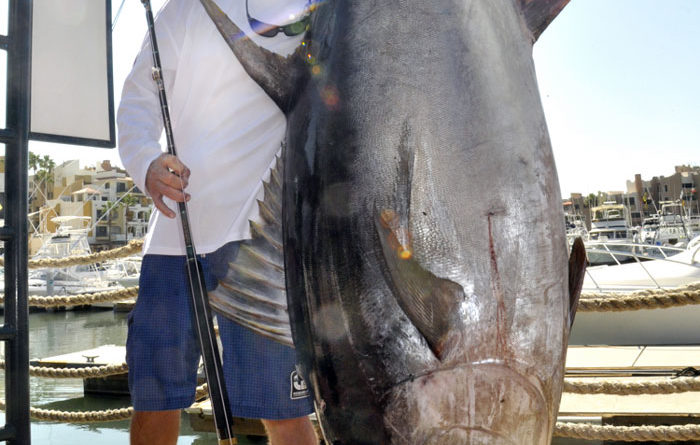 $1 Million to Be Awarded for Record Tuna Catch