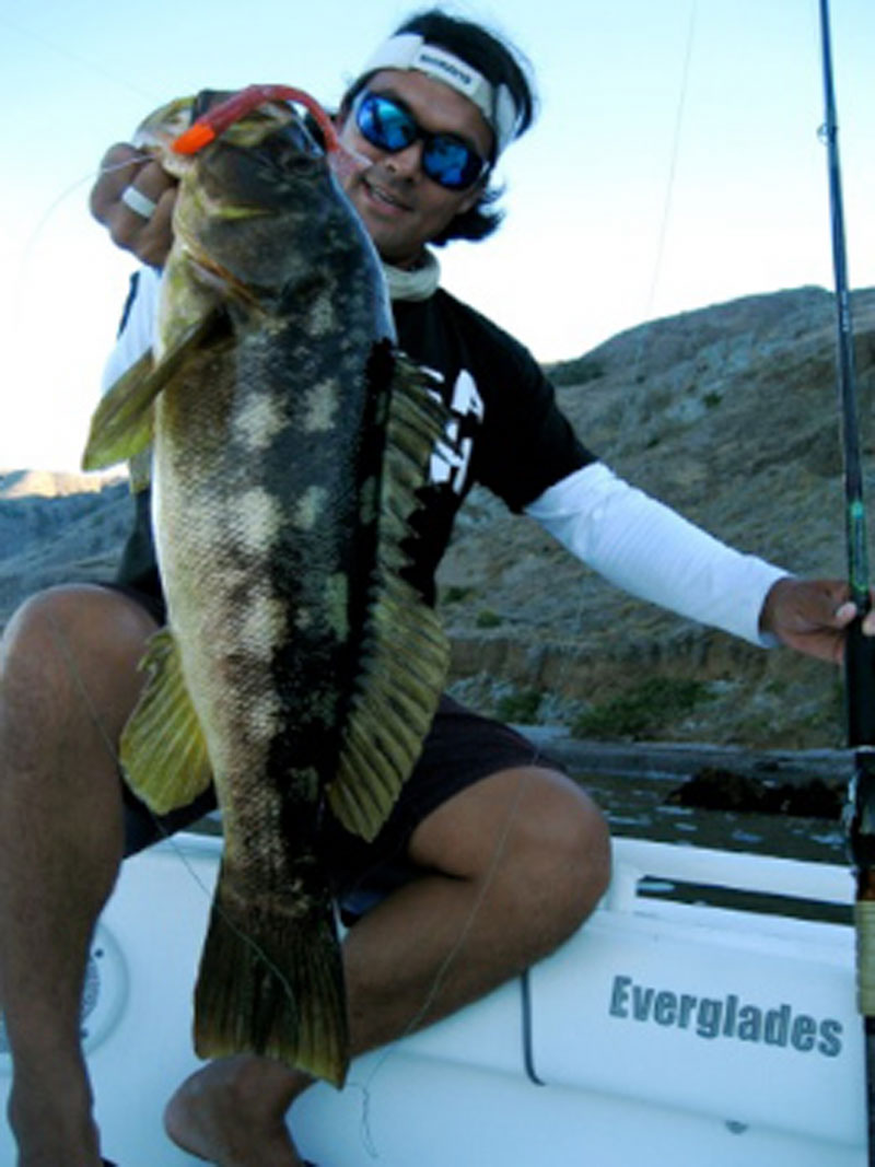 Get Insider Knowledge at Saltwater Bass Seminar