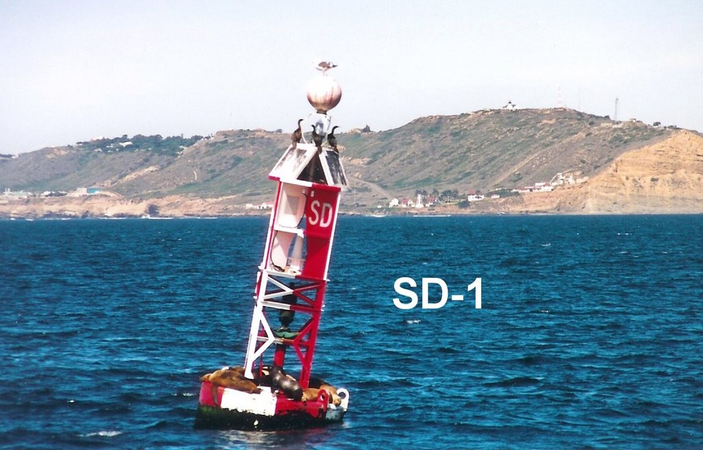 San Diego buoy sinks, sparks debate over navigational aid options