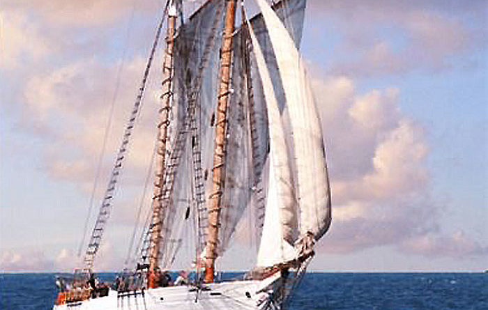 Two Injured When Tall Ship Cannon Fires
