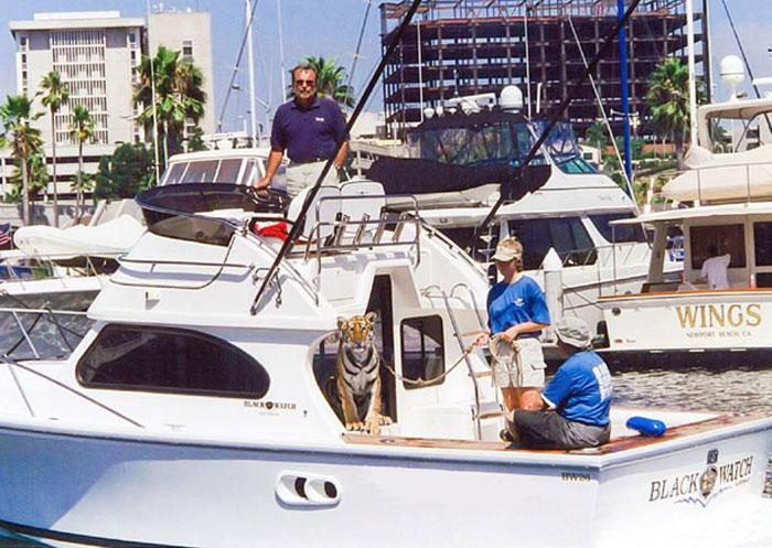Newport Boat Show Celebrates 40th Anniversary