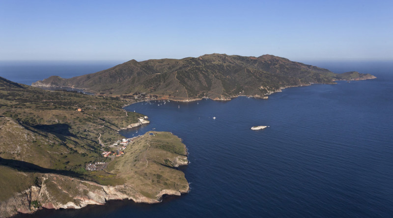 What's happening on Catalina Island?