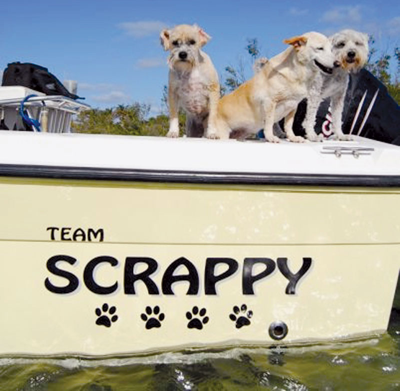 'Seas the Day' Tops Most Popular Boat Name List
