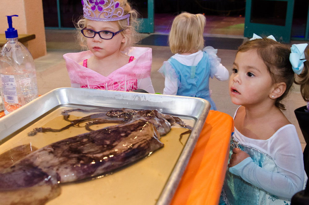 Haunted Birch Aquarium kicks off Oct. 23-24