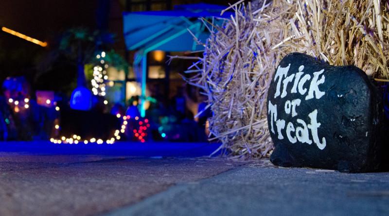 Haunted Birch Aquarium kicks off Oct. 23-24