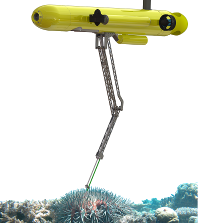 Robot has crown-of-thorns starfish in its sight