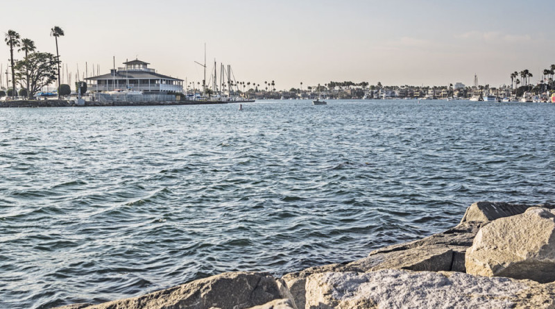 Alamitos Bay Marina enters eighth phase