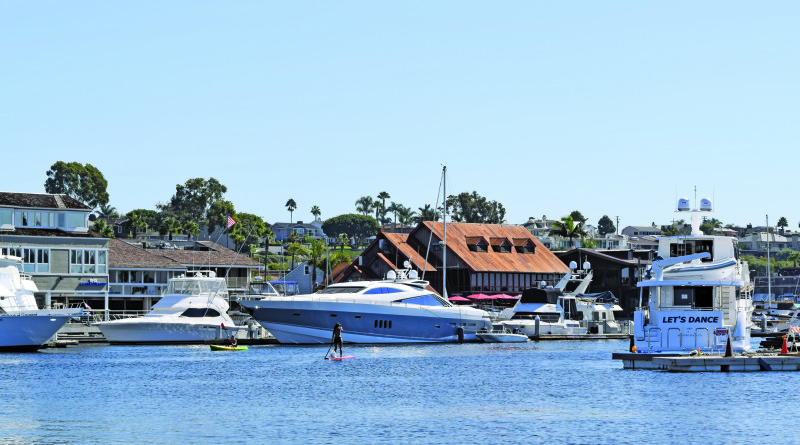 Ad hoc committee to study paddleboard use in Newport Harbor