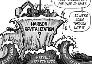 Cartoon, June 17 edition