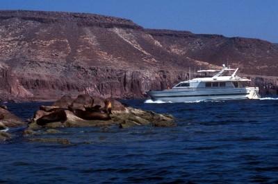 Boat Spots Elite Seal Team