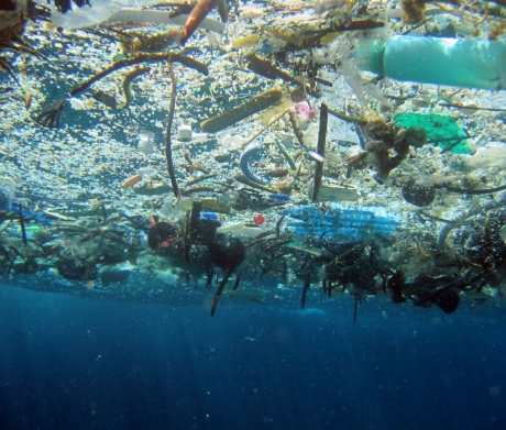 NOAA photo