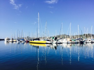 "According to the grand jury report, Santa Barbara liveaboards are appreciated by harbor officials since they serve as ""the eyes and ears"" of the harbor. Parimal M. Rohit photo"