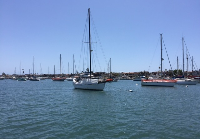 Harbor Patrol personnel may soon have the authority to board vessels to inspect marine sanitation devices on boats in Newport Harbor if the city's municipal code is amended.