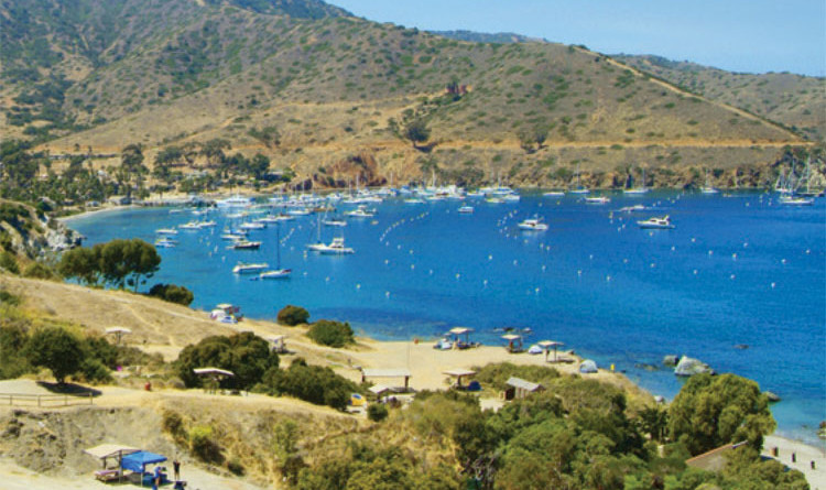 Catalina Dreaming program aims to draw boaters to Two Harbors