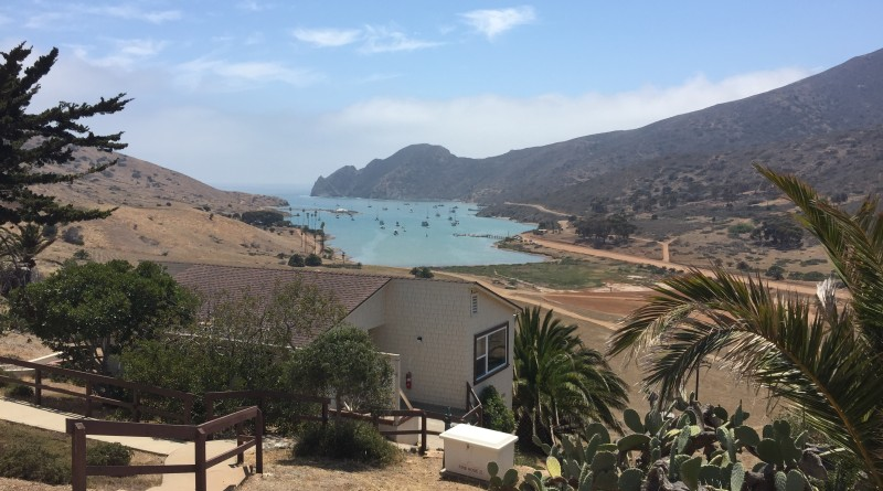 Avalon is not Catalina Island's only destination. Anglers, boaters, campers, hikers and swimmers also visit Two Harbors, about 20 miles west of Avalon. Two Harbors is home to the westernmost Civil War outpost.Parimal M. Rohit photo