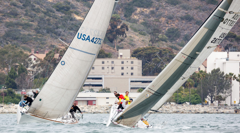 It was a close race for sailors running on the Living Coast Benefit Regatta race course held in San Diego waters. Cynthia Sinclair photo