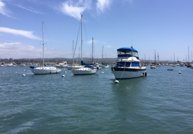 The public will be able to take a tour of the harbor during a Harbor Commission led harbor tour later this year. An ad hoc committee has been charged with discussing plans for the tour.Parimal M. Rohit photo