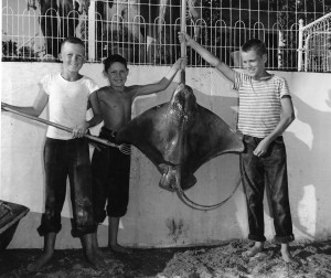 Hank Hill poses with the stingray he caught in 1946. Photo courtesy of Mark Mowery