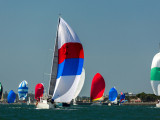 Sailors competing in the Sharp HospiceCare Regatta will race from the east end of Harbor Island, wind around San Diego Bay and finish near the Coronado Yacht Club.Sharp HospiceCare