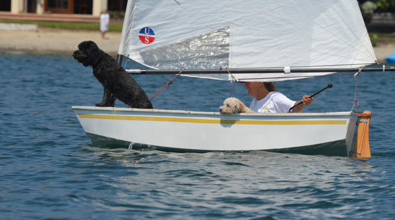 Sandy Vissan with dogs Ewok and OB, take the lead in the Intergalactic Sabot Regatta.