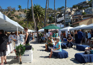 Guests enjoy a glass or two of wine during the Catalina Island Women's Forum Wine Festival.