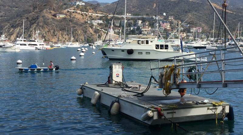 Avalon Fuel Dock
