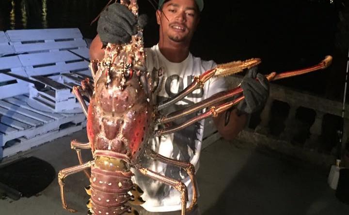 Giant lobster in Bermuda